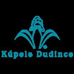 dudince-logo-verteco-partners