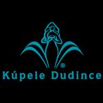 Logo referencie dudince